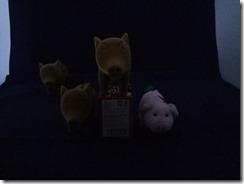 暗闇 Redmi Note 4 ISO 1600