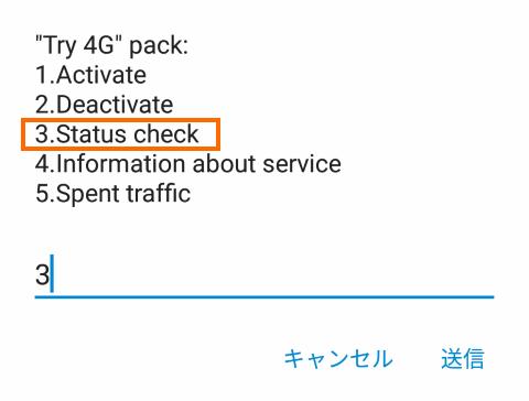 4G Tryのステータス確認