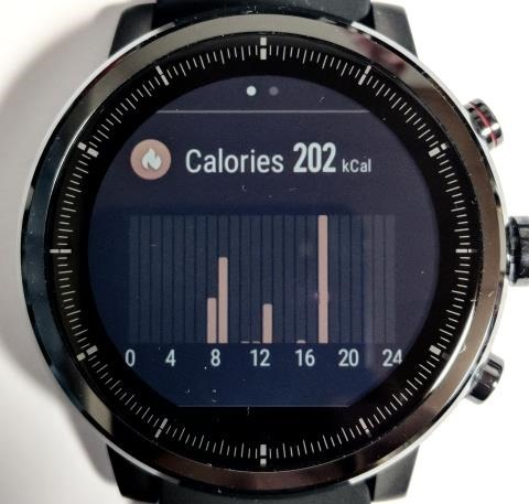 Amazfit Stratos画面: 1日の消費カロリー