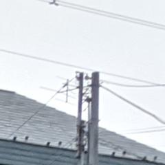 Pixel 4の写真の拡大 4